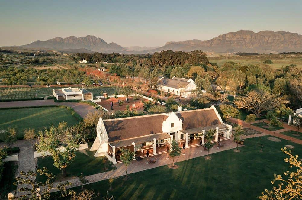 Spier Wine Estate   The Best Of South Africa's Western Cape Wine Farms   Discover South Africa